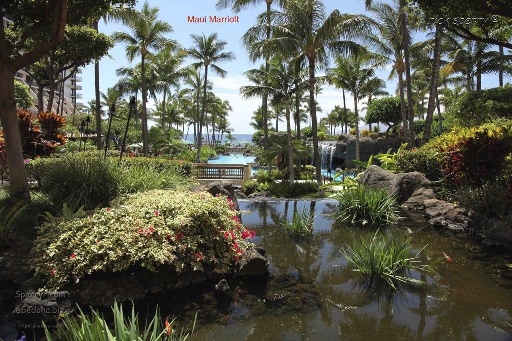 Ocean Front Balcony Maui Marriott Vacation Rental  Book Early!