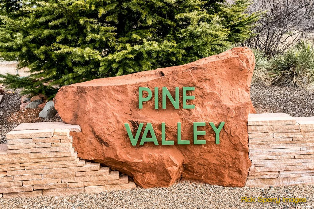 HOmes for sale in Pine Valley AZ