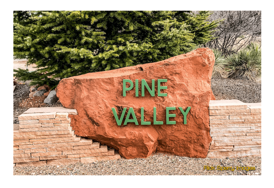Pine Valley Homes for sale by Sheri Sperry Coldwell Banker
