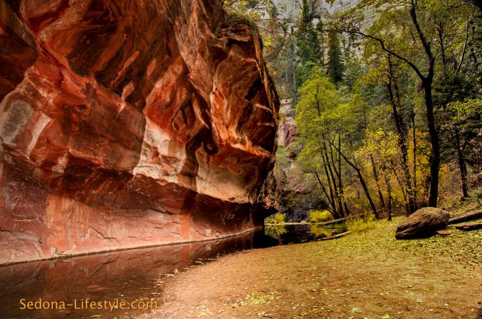 West Fork Trail ~ Oak Creek Canyon ~ Sedona Arizona