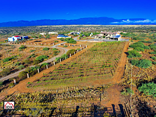 Verde Valley Wineries for sale