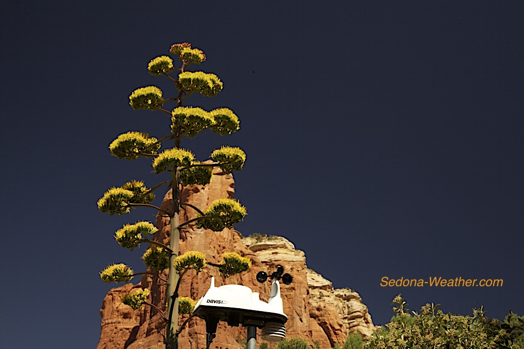 Sedona Weather June 2019