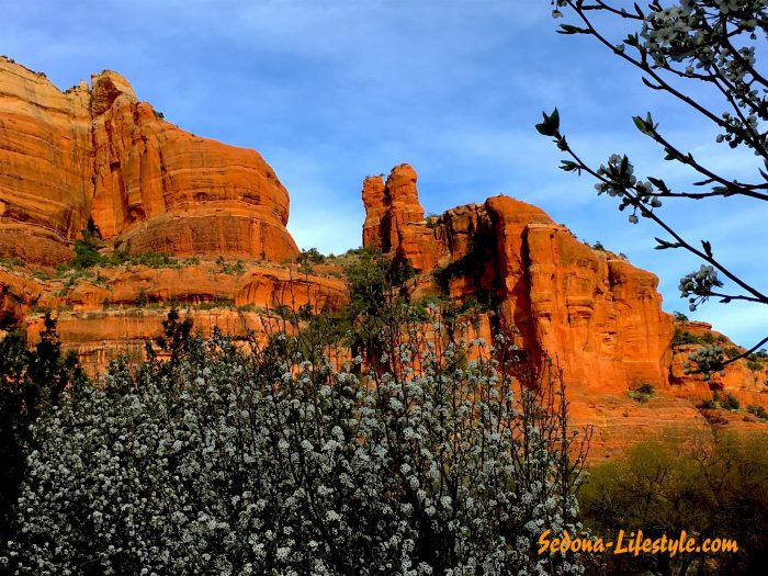 Sedona Weather Stats for February 2020 – Are Sign of Spring Here!