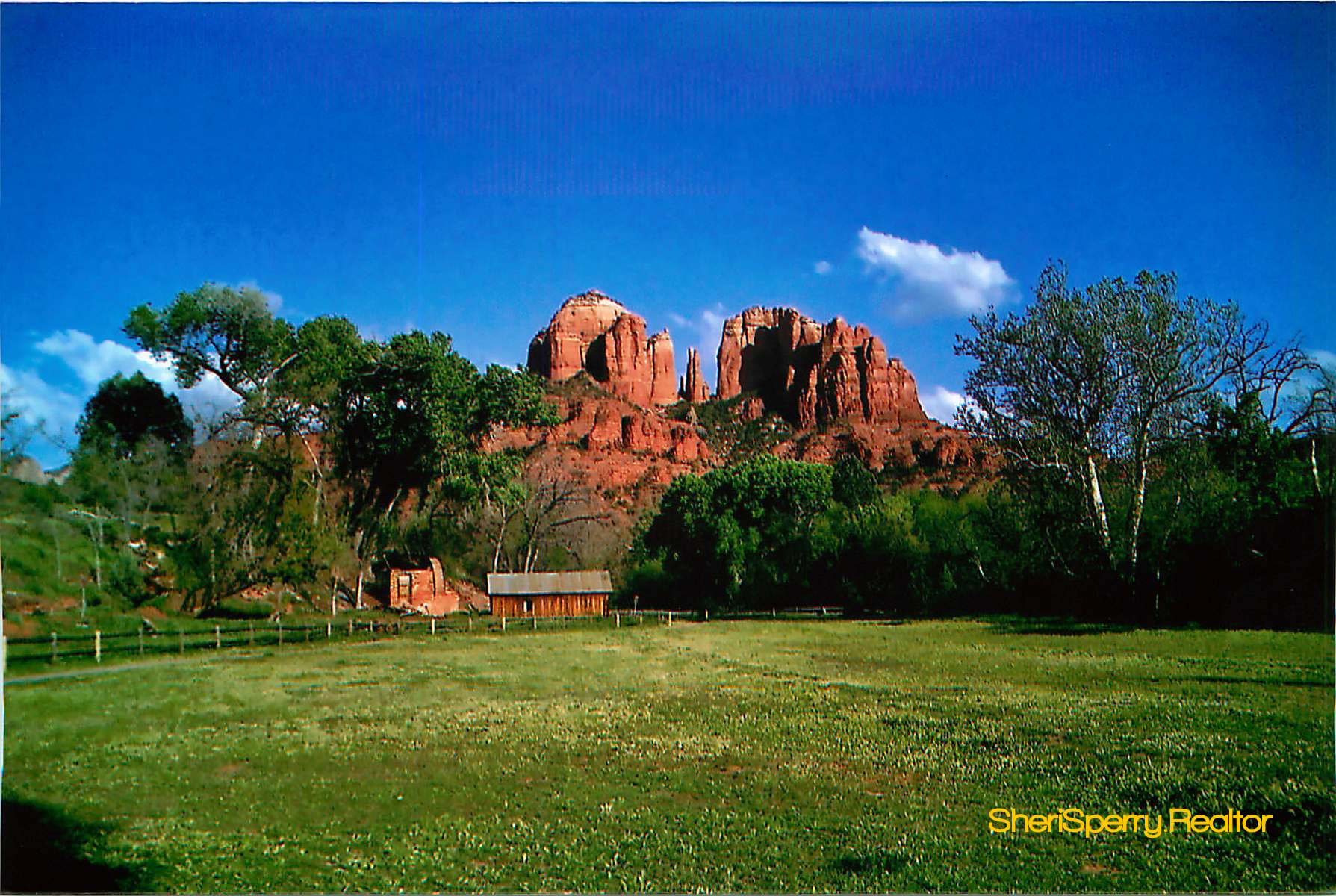 Cathedral Rock in early Spring
