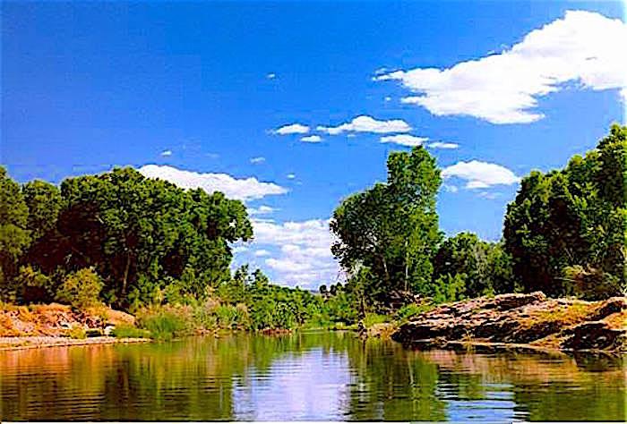 Cottonwood Verde River