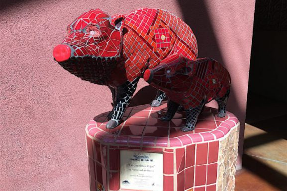 "Sedona Arizona ~ ""Javelina On Parade"""